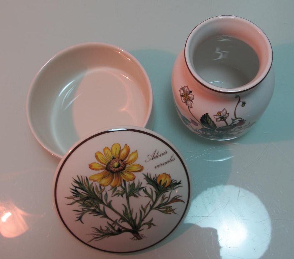 vase dose villeroy boch botanica sch nes konvolut ebay. Black Bedroom Furniture Sets. Home Design Ideas